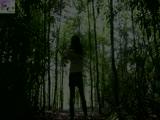Dans les bois 3